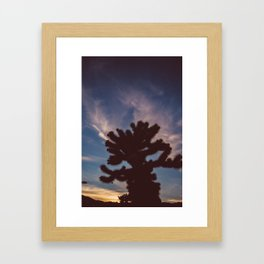 Cholla Cactus Garden VII Framed Art Print