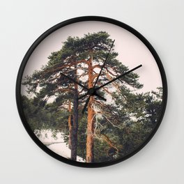 The beauty of high mountain trees Wall Clock