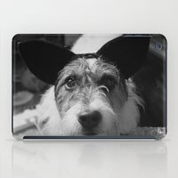 jack russell iPad Cases featuring Jack Russell by Arianne Kenworthy Photography