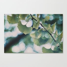 Rain in Yoyogi-kōen Canvas Print