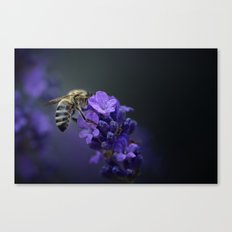 And then there was light! Canvas Print