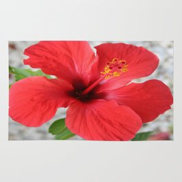 A Stunning Scarlet Hibiscus Tropical Flower Rug