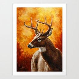 Whitetail Deer Buck Art Print