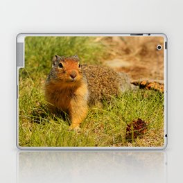 Twitchy Nosed Columbian Ground Squirrel Laptop & iPad Skin