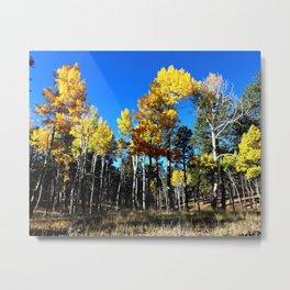 Aspen Leaves Arizona Autumn Metal Print