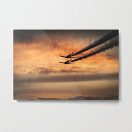 Fly with Me Metal Print