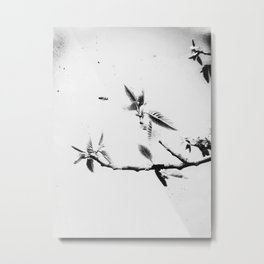 | time fission - or quantum memory, experiment no. one | Metal Print