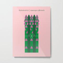 Vegetable: Asparagus Metal Print