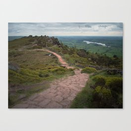 the roaches path Canvas Print