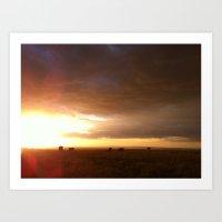 the sunset. Art Print