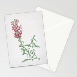 Vintage Red Dragon Flowers Illustration Stationery Cards