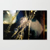 cracked Canvas Prints featuring Cracked by GrandmaStyleCo