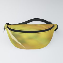 Red spot Fanny Pack