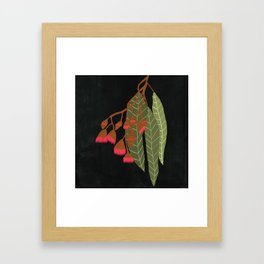 Flowering Gum - Black Framed Art Print
