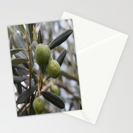 Magnificent olive trees Stationery Cards