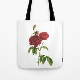 Vintage Red Rose [02] Tote Bag
