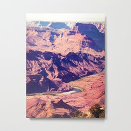 closeup desert at Grand Canyon national park, USA Metal Print