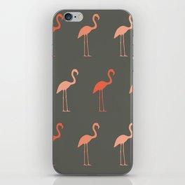 Pretty Flamingo iPhone Skin