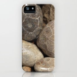 Petoskey Stones iPhone Case
