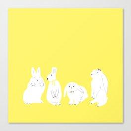 cute bunnies Canvas Print