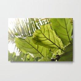 Tropical vibes leaves - Summer Light Metal Print
