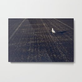 While on the ground Metal Print