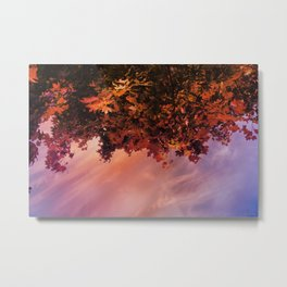 Ready for the Fall Metal Print