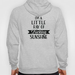 I'm A Little Ray Of Fucking Sunshine, Funny Quote Hoody
