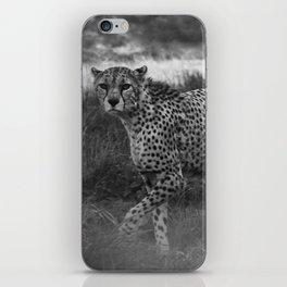 Cheetah Patrol iPhone Skin