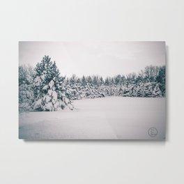 After the Blizzard, Bismarck, North Dakota Metal Print
