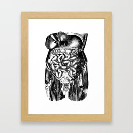 Grind organs Framed Art Print