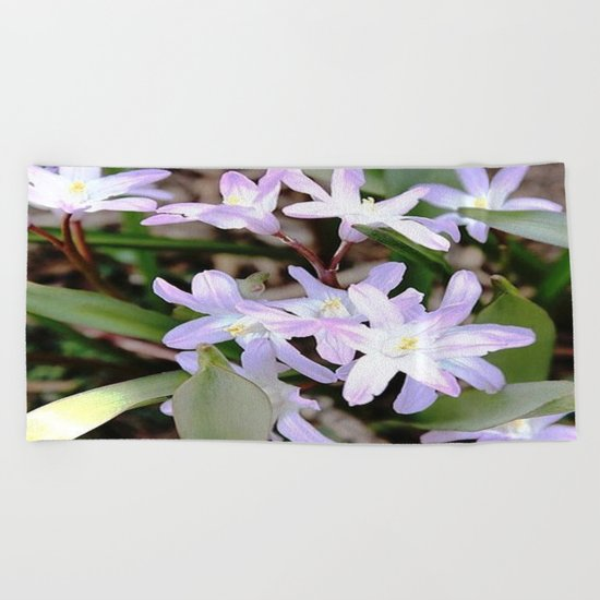 Delicate Beauty - Glory In The Snow - Pink Beach Towel