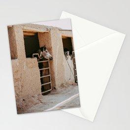 Morocco Desert Horse photo print - Agafay pastel desert  Stationery Cards