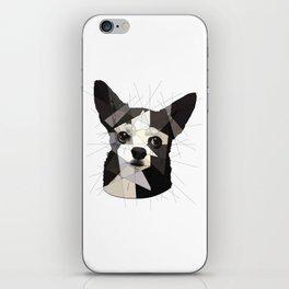 Black Chihuahua iPhone Skin