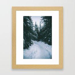Winter Trails Framed Art Print