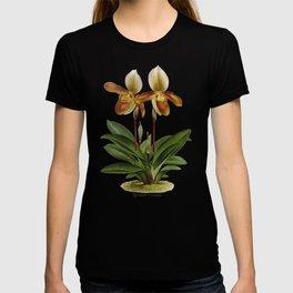 Cypripedium crossianum old plate T-shirt