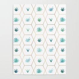 Geometric Succulents Poster