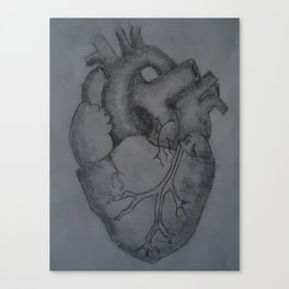 ...like seperate chambers of the human heart. Canvas Print