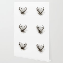 WHITETAIL DEER RACK Wallpaper