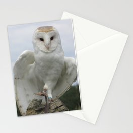 Hopping Owl Stationery Cards