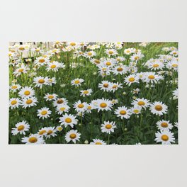 Daisy Garden on Brightwood Rug