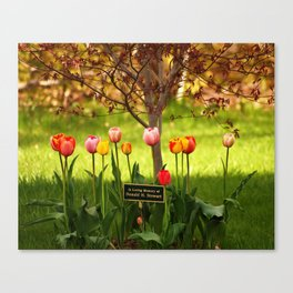 Tulips with a Tribute Canvas Print