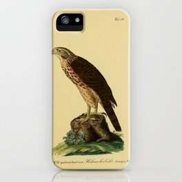 Goshawk 2 iPhone Case