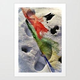 Find The Path Art Print