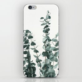 Eucalyptus Leaves iPhone Skin