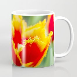 Fringed tulips Coffee Mug