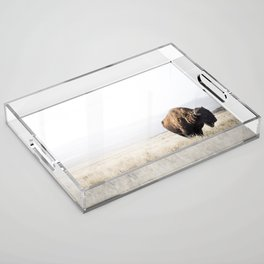 Bison stance Acrylic Tray