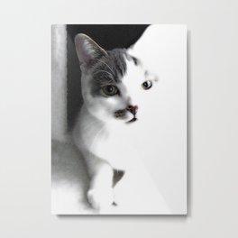 Cautious Cletis the Cat Metal Print