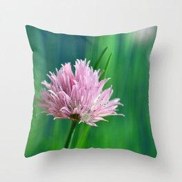 Allium pink 076 Throw Pillow
