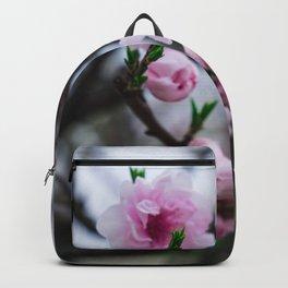 Sakura III Backpack